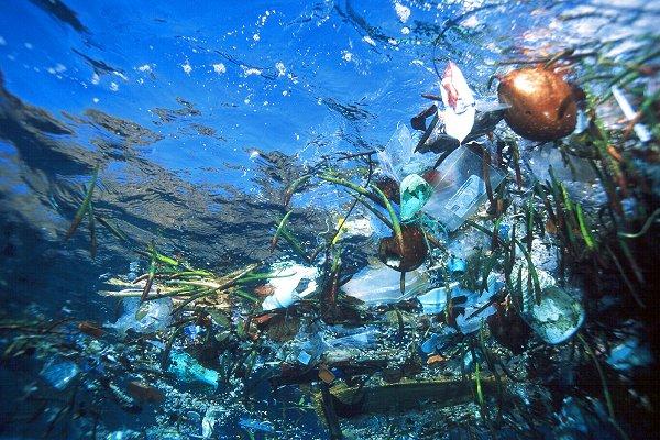 plastic-ocean-trash.jpg